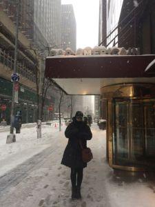 Tormenta en Nueva York, New York